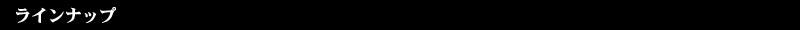 CW01S.3